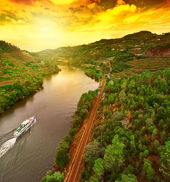 Douro Vineyards in Portugal